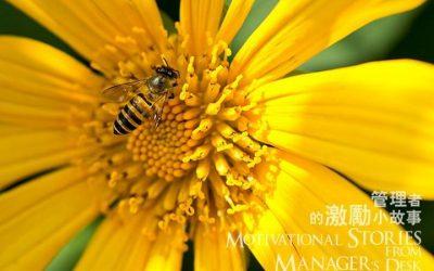管理者的激励小故事 – 蜜蜂